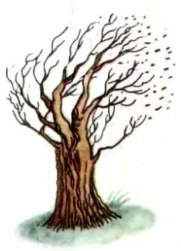 Два вітри (латиська народна казка)