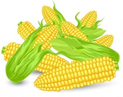 Як Цаген кукурудзу посіяв (інгуська казка)