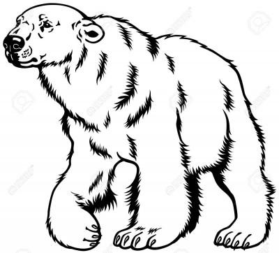 Король білих ведмедів (Френк Баум)