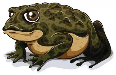 Пихата жаба (В. Сухомлинський)