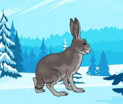 Заєць і мороз (латиська народна казка)