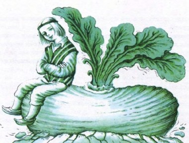Біднякова ріпа (фінська казка)