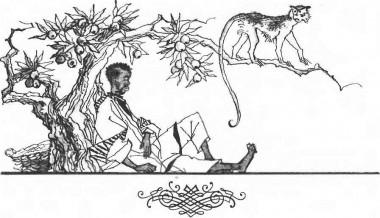 Все хоче жити (африканська казка)