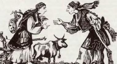 Дев'ять братів-сіроманців (хорватська казка)