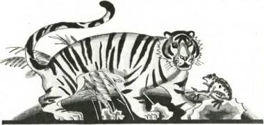Жаба та тигр (китайська казка)