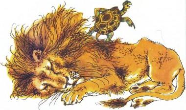 Кошіль черепахи (африканська казка)
