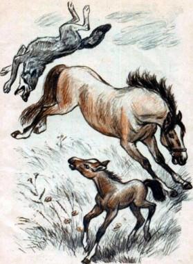 Нерозумний вовк (таджицька казка)