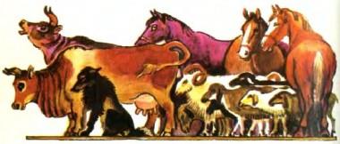 Хлопець-сирота і жовтий собака (бурятська казка)