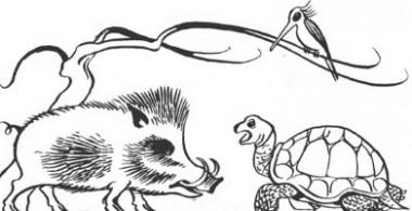 Черепаха й кабан (японська казка)
