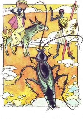 Чорний чоловік і чорний тарган (африканська казка)