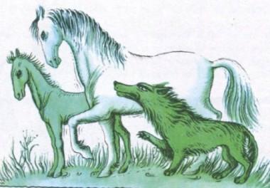Як вовк роздивлявся паспорт (фінська казка)