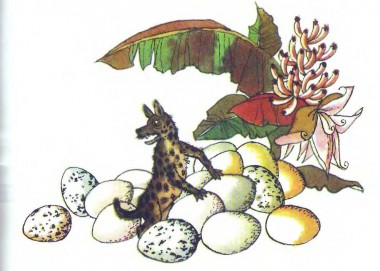 Як гієна та заєць квасолю садили (африканська казка)