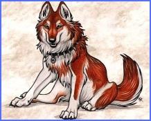 Бідний вовк (українська народна казка)