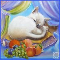 Біла кішка (Марі Катрін Д'Онуа)