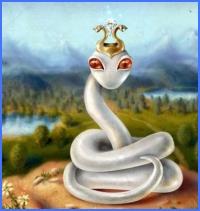 Біла змія (Брати Ґрімм)