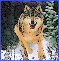 Голе телятко і вовк (українська народна казка)