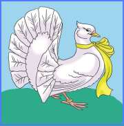 Тохей і голубка (в'єтнамська казка)
