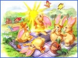 В країні сонячних зайчиків.