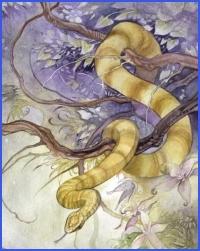 Ворона та змія (українська народна казка)