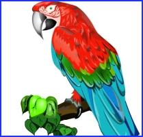 Як папуги купця ошукали (індійська казка)